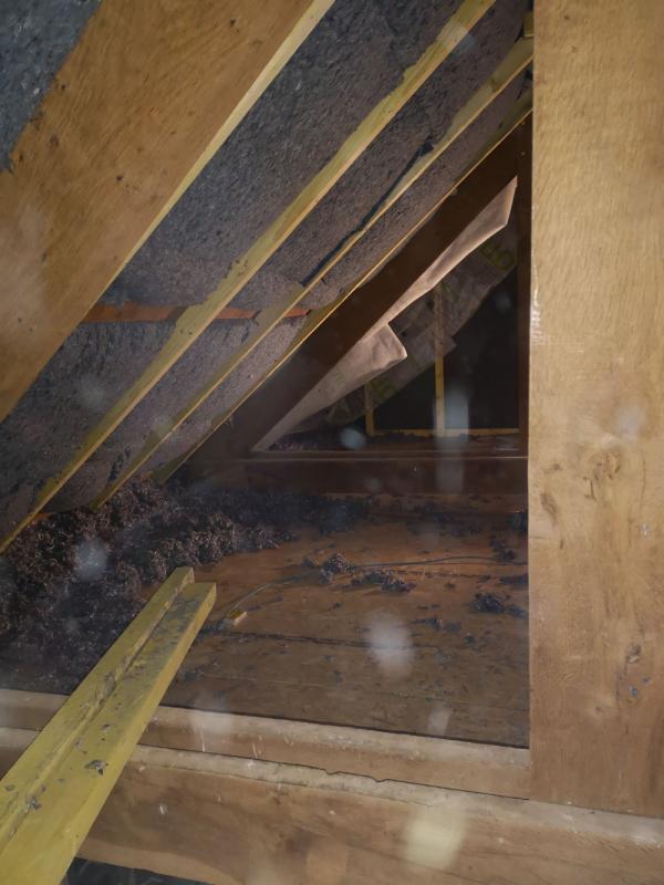 Rénovation bâtisse ancienne avec isolations écologique des rampants à Saint Nolff 4