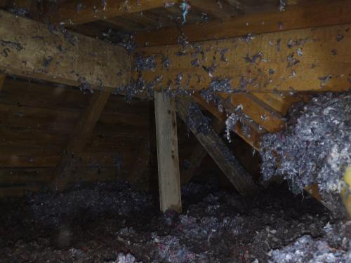 Isolation des combles perdus à Brech dans le cadre d'une rénovation